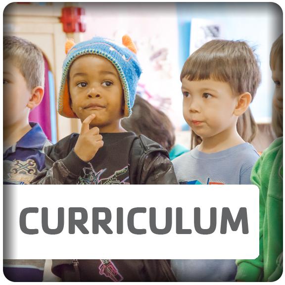 Curriculum Button 2